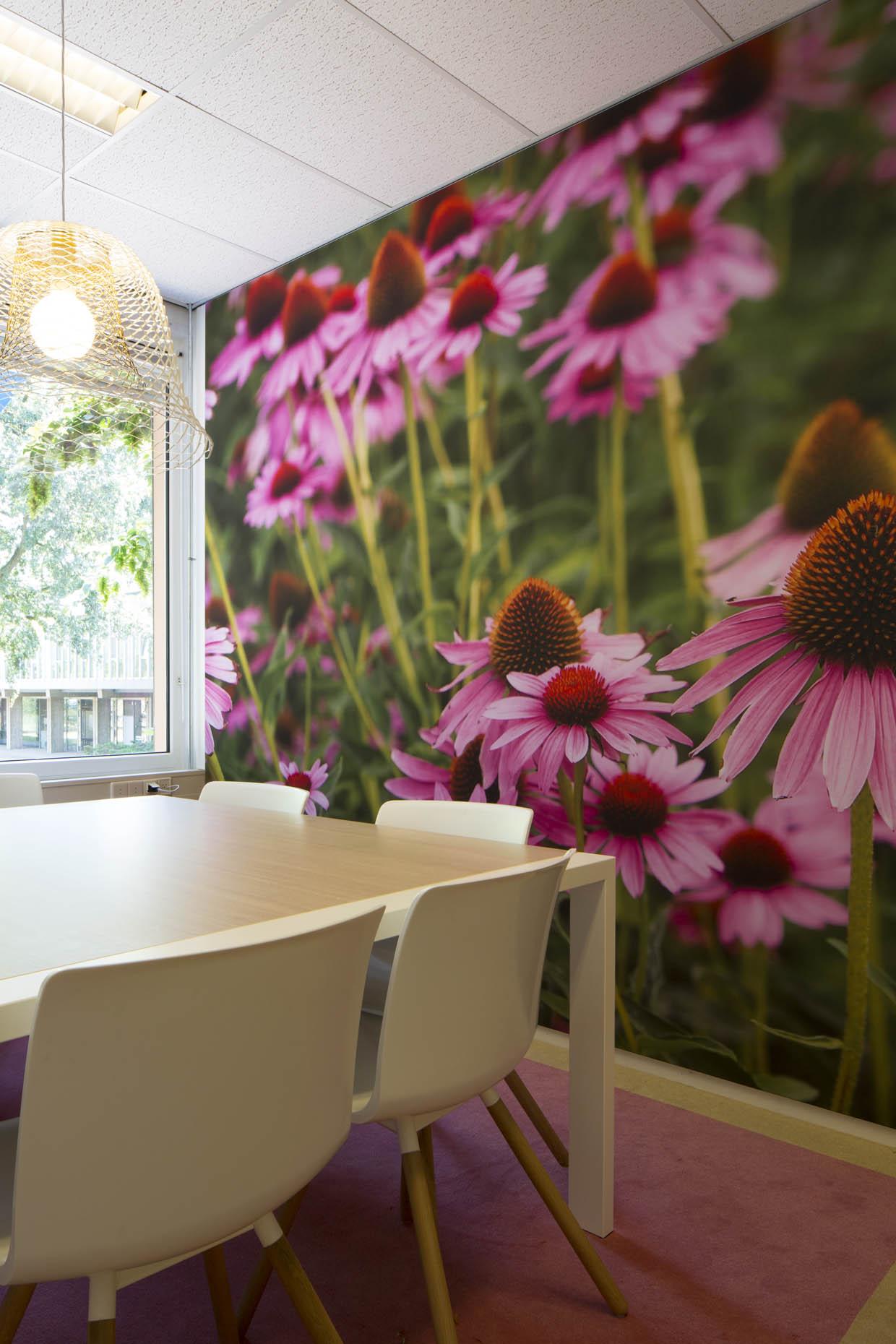 radboud-health-academy-0031_3k9a1069-fotografie-matthijs-borghgraef